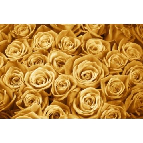 Купить на заказ Заказать Золотые розы 51 шт с доставкой по Костанаю с доставкой в Костанае